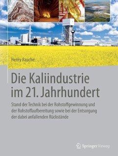 Die Kaliindustrie im 21. Jahrhundert (eBook, PDF) - Rauche, Henry