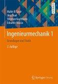 Ingenieurmechanik 1 (eBook, PDF)
