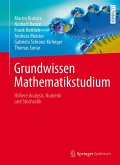 Grundwissen Mathematikstudium (eBook, PDF)