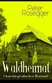 Waldheimat (Autobiografischer Roman) (eBook, ePUB)