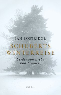 Schuberts Winterreise (eBook, ePUB) - Bostridge, Ian