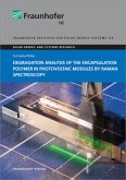 Degradation Analysis of the Encapsulation Polymer in Photovoltaic Modules by Raman Spectroscopy.