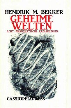 Geheime Welten (eBook, ePUB)