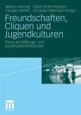 Freundschaften, Cliquen und Jugendkulturen (eBook, PDF)