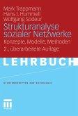 Strukturanalyse sozialer Netzwerke (eBook, PDF)