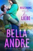 Begegnung mit der Liebe / Die Sullivans Bd.3 (eBook, ePUB)