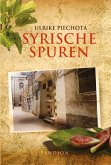 Syrische Spuren: Polit-Thriller (eBook, ePUB)