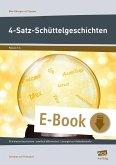 4-Satz-Schüttelgeschichten (eBook, PDF)