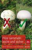 Pilze sammeln leicht und sicher (Mängelexemplar)