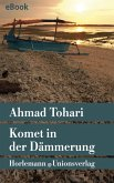 Komet in der Dämmerung (eBook, ePUB)