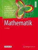 Mathematik (eBook, PDF)