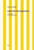 Labyrinth der Gegenwart (eBook, PDF)