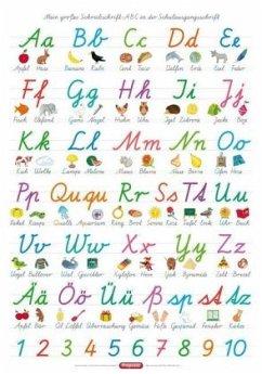 Fragenbär-Lernposter. Mein großes Schreibschrift-ABC in der Schulausgangsschrift (SAS) - Fels, Bengt