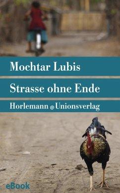 Straße ohne Ende (eBook, ePUB) - Lubis, Mochtar