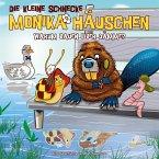 Warum bauen Biber Dämme?, 1 Audio-CD / Die kleine Schnecke, Monika Häuschen, Audio-CDs Nr.44
