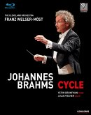 Johannes Brahms - Cycle