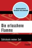 Die erloschene Flamme (eBook, ePUB)