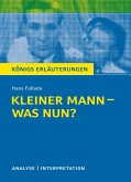 Kleiner Mann – was nun? (eBook, ePUB)