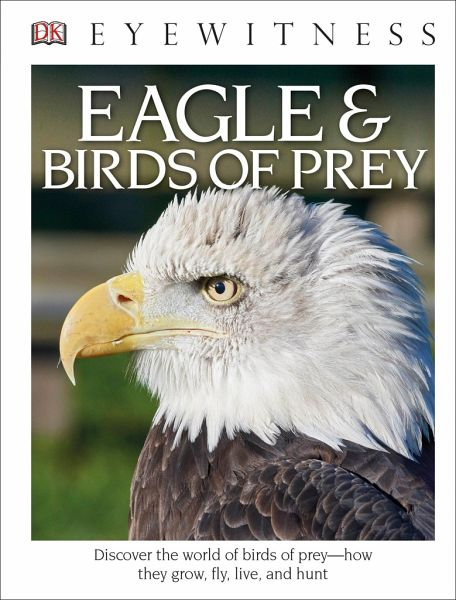 Parry Jones J Eagle Birds Of Prey