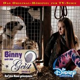 Auf den Hund gekommen / Binny und der Geist Bd.4 (MP3-Download)