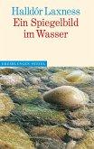 Ein Spigelbild im Wasser (eBook, ePUB)