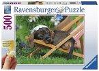 Ravensburger Puzzle 13649 - Süßer Dackel 500 Teile Gold Edition