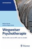 Wegweiser Psychotherapie (eBook, PDF)