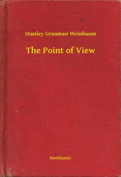 Point of View (eBook, ePUB)