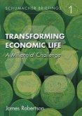 Transforming Economic Life (eBook, ePUB)