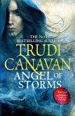 Angel of Storms (eBook, ePUB)