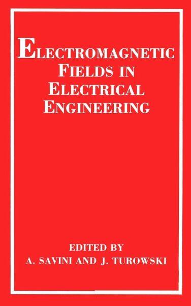 Electromagnetic Fields in Electrical Engineering (eBook, PDF)