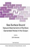 Sea Surface Sound (eBook, PDF)