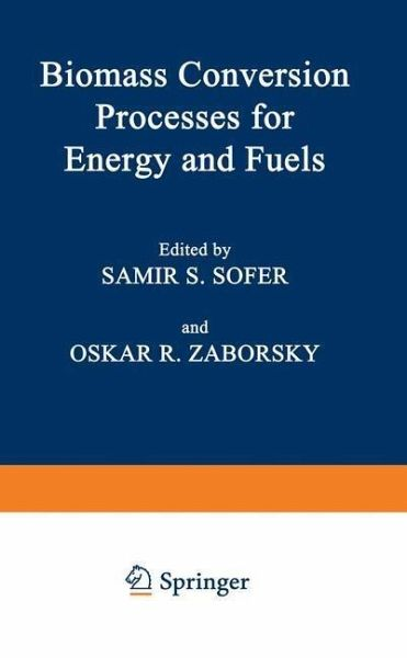 Biomass Conversion Processes for Energy and Fuels (eBook, PDF)