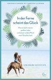 In der Ferne scheint das Glück / Sehnsuchtsorte Bd.2 (eBook, ePUB)
