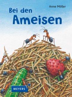 Bei den Ameisen - Möller, Anne