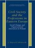 Civil Society and the Professions in Eastern Europe (eBook, PDF)
