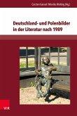 Deutschland- und Polenbilder in der Literatur nach 1989 (eBook, PDF)