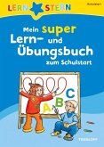 Lernstern: Mein super Lern- und Übungsbuch zum Schulstart