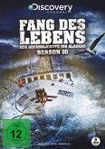 Fang des Lebens - Der gefährlichste Job Alaskas - Season 10 DVD-Box