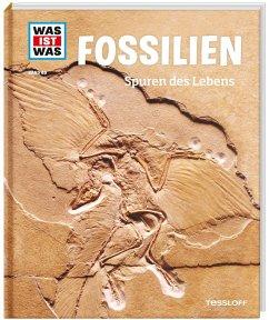 Fossilien. Spuren des Lebens