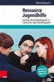 Ressource Jugendhilfe (eBook, PDF)