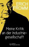 Meine Kritik an der Industriegesellschaft (eBook, ePUB)
