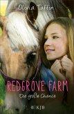 Die große Chance / Redgrove Farm Bd.3 (eBook, ePUB)