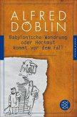 Babylonische Wandrung oder Hochmut kommt vor dem Fall (eBook, ePUB)