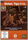 Elefant, Tiger & Co. - Glückliche Kindheit bei den Erdmännchen, 2 DVDs