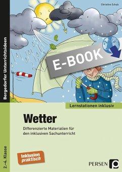 Wetter (eBook, PDF) - Schub, Christine