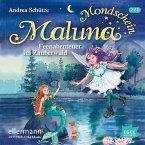 Feenabenteuer im Zauberwald / Maluna Mondschein Bd.7 (Audio-CD)