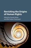 Revisiting the Origins of Human Rights (eBook, PDF)