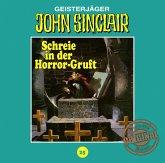 Schreie in der Horror-Gruft (Teil 2 von 3) / John Sinclair Tonstudio Braun Bd.25 (1 Audio-CD)