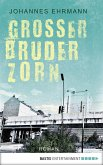 Großer Bruder Zorn (eBook, ePUB)